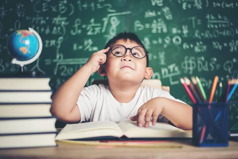Enfants à Haut Potentiel : qui sont nos petits zèbres ?